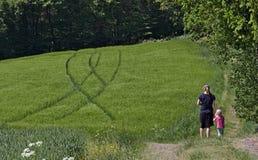 Mère et enfant en bas âge tenant des mains tout en se tenant au bord d'un champ fertile vert avec un treeline à l'arrière-plan Photographie stock libre de droits