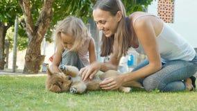 Mère et enfant jouant avec le chiot un jour chaud d'été extérieur Photographie stock libre de droits