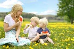 Mère et enfants en bas âge mangeant du fruit dans le pré de fleur Image libre de droits