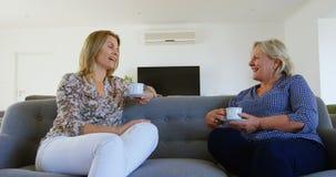 Mère et fille agissant l'un sur l'autre les uns avec les autres tout en ayant le café 4k banque de vidéos