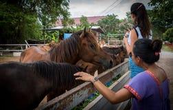 Mère et fille avec des chevaux images stock