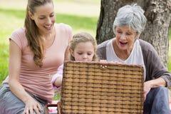 Mère et fille de grand-mère avec le panier de pique-nique au parc Images libres de droits