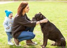 Mère et fille en parc marchant avec leur grande canne de chien Photo libre de droits
