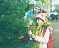 Mère et fille restant au marché parmi des arbres de Noël Photos libres de droits