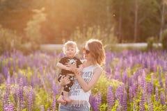 Mère et fils heureux dans le domaine de loup de floraison Photographie stock