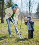 Mère et fils plantant l'arbre Image stock