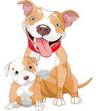 Mère et petit animal de pitbull illustration libre de droits