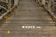 100 mètres Images libres de droits