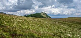 Mètres de prairie à partir de 2000 Image libre de droits