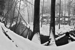 Méandre de crique de potok de Robecsky en vallée de Peklo en hiver neigeux dans la région de kraj de Machuv dans la République Tc Photo libre de droits