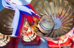 Médaille d'or de la Russie images libres de droits