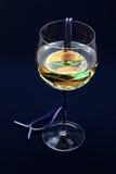 Médaille en vin. Images stock