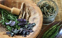 Médecine de fines herbes Images stock