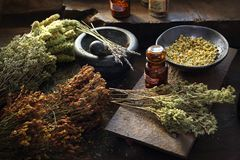 Médecine de Herbal de Herbalist et médecine naturelle Rem?des de fines herbes traditionnels photographie stock