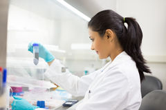 Médecine de laboratoire Photo stock