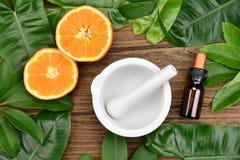 Médecine et soins de santé organiques naturels, médecine alternative d'usine photographie stock
