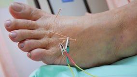 Médecine intégrée Photo stock