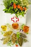 Médecine parallèle Thérapie de fines herbes photo libre de droits