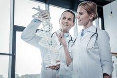 Médecins qualifiés intéressés tenant et donnant sur la structure d'ADN Photographie stock