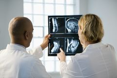 Médecins regardant le rayon X. Image libre de droits
