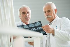 Médecins supérieurs regardant le rayon X Images libres de droits