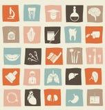 Médico, ciência e ícones anatômicos no vetor Imagem de Stock Royalty Free