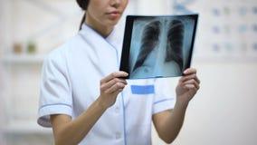 Médico fêmea que olha atentamente os pulmões raio X, risco de bronquite, saúde filme