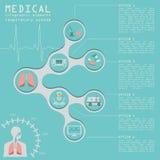 Médico y atención sanitaria infographic, infograph del sistema respiratorio Fotografía de archivo libre de regalías