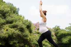 Méditation de détente de yoga de parc de ventre de mère de femme enceinte Photos stock