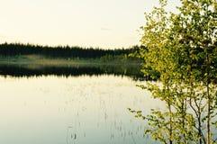 Méditation magique de lac de forêt de bouleau et photo de détente Image libre de droits