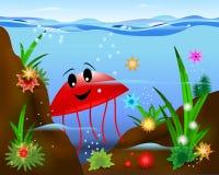 Méduses rouges, vecteur de cdr Photo stock