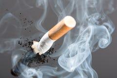 Mégot dans la fumée Image libre de droits
