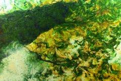 Mélancolie abstraite de peinture d'automne Images libres de droits