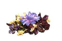 Mélange aromatique Photo libre de droits