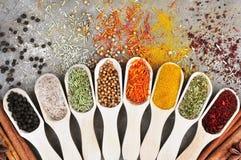 Mélange coloré des variétés d'herbe et d'épice image stock