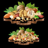 Mélange d'illustration de vecteur de différents types nuts illustration libre de droits