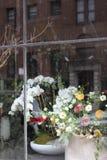 Mélange de fleur de ressort Image libre de droits