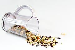 Mélange de haricot dans un bosquet Photos stock