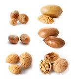 Mélange de noix Photos libres de droits