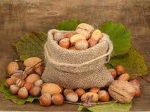 Mélange de noix Photo stock