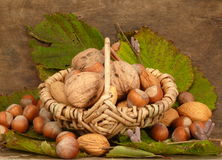 Mélange de noix Photographie stock