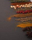 Mélange des épices Photographie stock libre de droits
