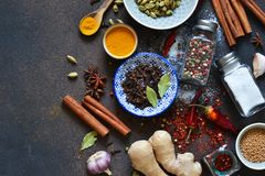 Mélange des épices asiatiques : piment, gingembre, ail, cardamome, cannelle image stock