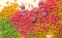Mélange des amorces de carpe Boules et granule de protéine Image stock