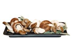 Mélange des champignons de couche avec l'herbe de la plaque noire Photos stock