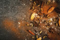Mélange des espions pour le thé épicé chaud Image stock