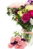 Mélange des fleurs d'aster Image stock