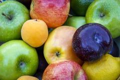 Mélange des fruits Photo libre de droits