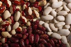 Mélange des haricots - rouges, blancs, et rouges et blancs à un arrière-plan Photo stock