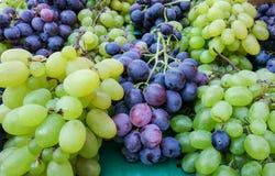 Mélange des raisins vert-jaunes et noirs à vendre au marché d'agriculteurs de ville de Zagreb photo libre de droits